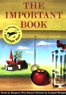 Must Read Mentor Text: The Important Book - is a patterned text that I use at the beginning of the school year. (Writing activity)