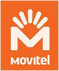 Viettel in Mozambique Honored as Fastest-Growing Company of the Year in Africa and the Middle East | Database of Press Releases related to Africa - APO-Source