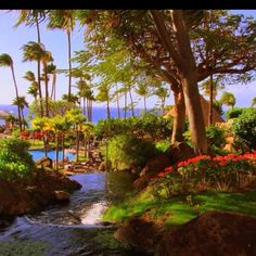 Westin hotel in Maui:  this looks heavenly and surreal. i hope to stay at this Westin location when I go to Hawaii in the future :)