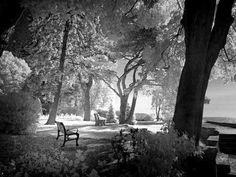 Gairloch Gardens, Oakville