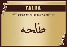 Talha - Arapça Yazılışı