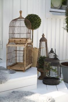Bird cages & Cloches available at American Home & Garden in Ventura Ca