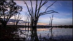 A short sunset by the Lake in Wagga Wagga