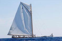 15m D1 with broken mast - Les Voiles de St Tropez 2016