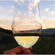 Happy #WineWednesday all! Great capture from our neighbors at @starmontwinery. #sunset #napavalley #winecountry #happyplace #cheers #wine #beautiful