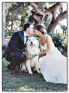 dog pees on wedding dress Dog Wedding, Wedding Goals, Trendy Wedding, Wedding Pictures, Perfect Wedding, Wedding Engagement, Wedding Planning, Dream Wedding, Wedding Day