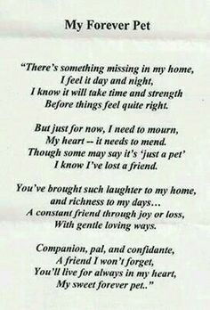 Losing a pet means losing a best friend dont want to think when my Sally will leave me I Love Dogs, Puppy Love, Pass Away Quotes, Pet Poems, Dog Passed Away, Pet Loss Grief, Pet Remembrance, Pet Memorials, Animal Quotes