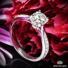 """A Whiteflash Signature Design, this stunning 4 prong ring takes the beauty of our """"Legato Sleek Line"""" Solitaire and combines it with 16 of our brilliant A CUT ABOVE® Hearts and Arrows Diamond Melee (0.20ctw; F/G VS)."""