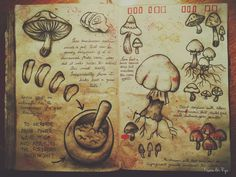Journal 3 Gravity Falls Alex Hirsch I started making the pages with invisible ink! Gravity Falls Book 3, Gravity Falls Journal 1, Libro Gravity Falls, Grabity Falls, Grimoire Book, Fallen Book, Magic Book, Witch Aesthetic, Book Of Shadows
