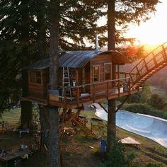 Il s'est construit une cabane en pleine forêt, avec terrain de skate et jacuzzi! | Actualités Seloger