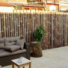 Black bamboo fence Source by Bamboo Garden Fences, Garden Privacy, Backyard Garden Design, Balcony Garden, Privacy Fence Designs, Bamboo Structure, Natural Fence, Black Bamboo, Diy Pergola