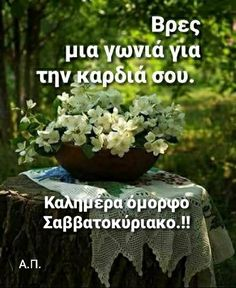 Good Morning, My Favorite Things, Plants, Buen Dia, Bonjour, Bom Dia, Plant, Buongiorno, Planting