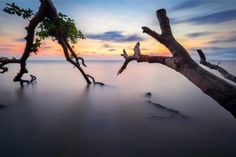 "Saatchi Art Artist maxim khytra; Photography, ""Koh Chang Thailand 120x80cm - Limited Edition 10 of 10"" #art"