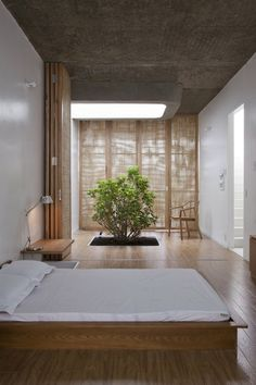 An Asian style room. Low furniture; natural elements like that mini tree.