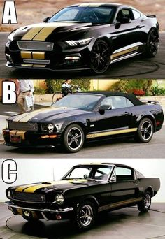 I would so love to have all three! Mustang Fastback, Mustang Cars, Ford Mustangs, Shelby Car, Shelby Mustang, Carroll Shelby, American Classic Cars, Classic Mustang, Pony Car
