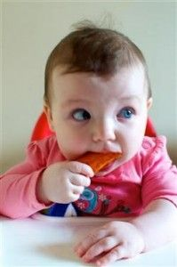 Baby Led Weaning Photo Diary with food descriptions