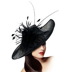 Kentucky Derby Profile Sculpted Fascinator - M34 BLACK Mr. Song Millinery Online Shopping to enter or purchase click on Amazon here http://www.amazon.com/dp/B007ZE9VHC/ref=cm_sw_r_pi_dp_iSY0tb16FTMH3GVE