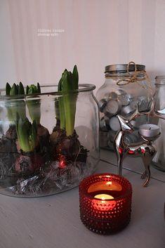 Mäkisen kauppa: Kohti joulun loppua... Vase, Home Decor, Decoration Home, Room Decor, Vases, Home Interior Design, Home Decoration, Interior Design, Jars