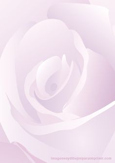 folio con fondo de rosa