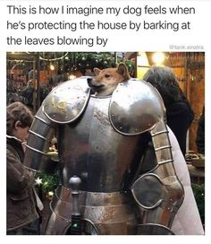 How you dog thinks he looks when protecting the house. Dogs protecting you from the leaves blowing outside. Pictures of dogs. Hilarious memes can't stop laughing. Funny Animal Memes, Cute Funny Animals, Funny Animal Pictures, Funny Cute, The Funny, Funny Dogs, Funny Images, Very Funny Pictures, Cartoon Memes