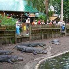 Alligator Farm, St Augustine FL