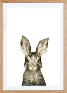 Little Rabbit als Gerahmtes Poster von Amy Hamilton | JUNIQE