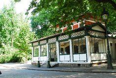 The lovely Rosa Bonheur in Paris