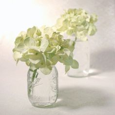 Hydrangea+Wedding+Centerpieces | ... Hydrangea Wedding Centerpieces Simple Hydrangea Wedding Centerpieces... mason jars