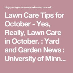 Lawn Care Tips for October - Yes, Really, Lawn Care in October. : Yard and Garden News : University of Minnesota Extension