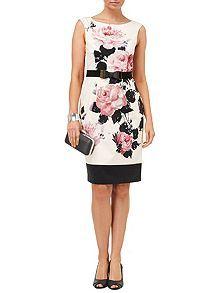 Carrera rose dress