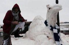 Fatwa issued for building snowmen in Saudi Arabia - PHOTOS