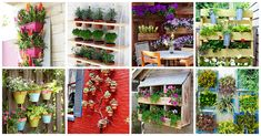 vertical gardening is becoming increasingly widespread as gardeners channel their inspiration to new heights of creativity. See the best ideas here.