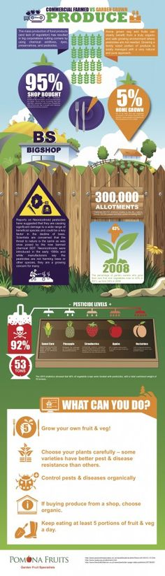 Commercial Farmed vs Garden Grown Produce