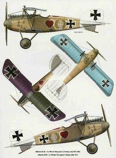Albatros DVa of Lt. Werner Voss