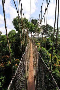 Traverser le pont suspendu de Kakum au Ghana.