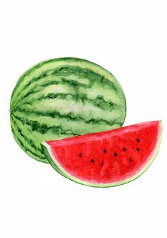 Watermelon Watercolor Art Print Food Home Decor Кitchen Wall Watercolor Clipart, Watercolor Fruit, Fruit Painting, Watercolor Flowers, Watercolor Paintings, Watermelon Art, Watermelon Painting, Watermelon Drawing, Clip Art