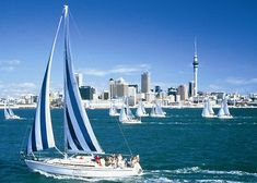 Auckland, New Zealand    Travel here and learn to sail/get on a boat/spend an afternoon with family on it