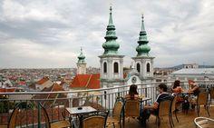 Young and dynamic: social entrepreneurship in Austria | Social ...
