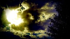 sky, low angle view, tree, scenics, cloud - sky, cloud, silhouette, beauty in nature, tranquility, tranquil scene, nature, sun, cloudy, majestic, cloudscape, growth, outdoors, sunbeam, day, treetop, outline, dramatic sky, high section, bright, storm cloud, no people