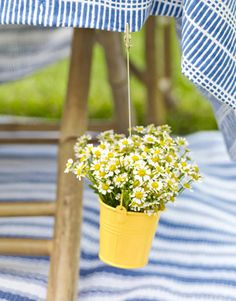 Summer Entertaining - Anchor Tablecloths with Pails of Posies -   Skip store-bought weights and make your own by filling tiny buckets with wildflowers and a half inch of water. Just suspend the bouquets from your tablecloth using a clip and fishing line or skinny ribbon. Tie and knot one end around the handle of the bucket and the other around the clip.