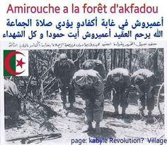 Allah Yarham al Chouhada _________________________________ #aljazair#el_djazair #follow4follike4followlow#y#like4like#likeforlike##followers #algérie#Algeria#dz#tunisia#lybia#polisario#mauritania#sudan#egypt#saudiarabia#ksa#uae#qatar#dubai#kuwait #jordan#-#@#palestine#iraq#turkey#istanbul#france#paris#usa