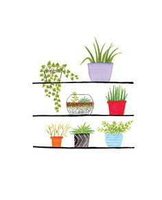 This delightful shelfie artwork is such a fun piece! Each of these adorable potted plants was creatively hand painted. The original art work is printed beautifully on high quality card stock ready to be framed or gifted. The versatile print would go great in a bedroom, living room gallery, or kitchen! - Dimensions: 8 x 10 inches - Delivered in a clear sleeve and sturdy mailer - Shipping is calculated at checkout *this item will ship separately if ordered with a terrarium kit