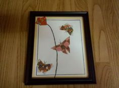 Playful Butterflies