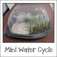 Mini Water Cycle Fun: Students would be in groups for this activity and I would make 'observation sheets' or I would ask the children to draw what they see happening in their science books/water cycle booklets.