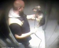 Quick links to share the petition: Man caught on CCTV throttling and kicking his pet dog receives light sentence! Petition to overrule the decision! | Yousign.org