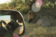 Sephiri Tours | Our Botswana | South Africa