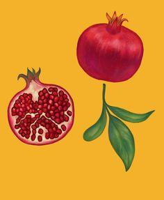 Pomegranate Drawing, Pomegranate Tattoo, Pomegranate Art, Botanical Line Drawing, Botanical Prints, Illustration Artists, Botanical Illustration, Pretty Mugs, Cute Couple Art