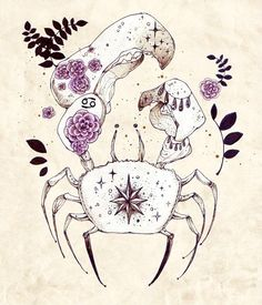 CANCER, cangrejo, crab, signos, aztrologia, zodiaco