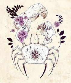 CANCER, cangrejo, crab, signos, aztrologia, zodiaco