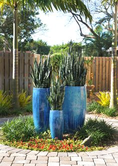 Bright blue pots accent a landscape designed by Pamela Crawford. See her work at pamela-crawford.com. Her services include landscape design and installation, pottery, outdoor furniture, and paving design. She covers Palm Beach County, including Boca Raton, Delray Beach, Palm Beach, Wellington, and Palm Beach Gardens.